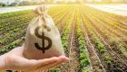 VBP de 2020 deve chegar a R$ 742,4 bilhões