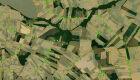 Estudo aponta áreas destinadas à preservação da vegetação nativa no mundo