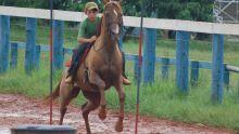Final Cross Country Cavalo Árabe