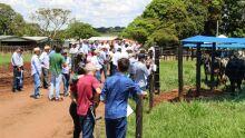 Dia de Campo na Fazenda Cachoeira São Sebastião