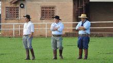 Credenciadora Cavalo Crioulo