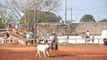 Circuito Morena-Acrissul de Laço Comprido, dia 22