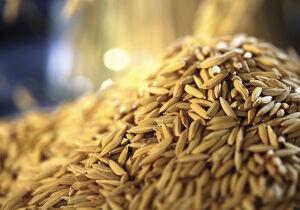 Alimentos com maior peso no consumo das famílias ajudam a derrubar inflação