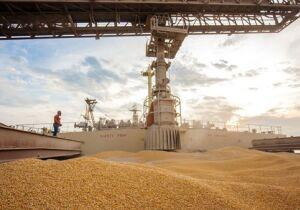 Anec eleva previsão de exportações de milho do Brasil em julho