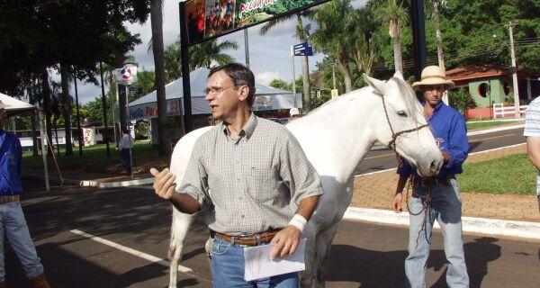 Cavalo pantaneiro, excelente opção para esportes equestres