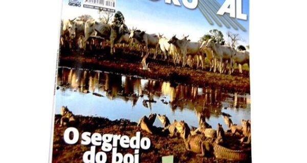 Pecuária Pantaneira é destaque da Revista Globo Rural – Maia diz que o assunto veio em boa hora