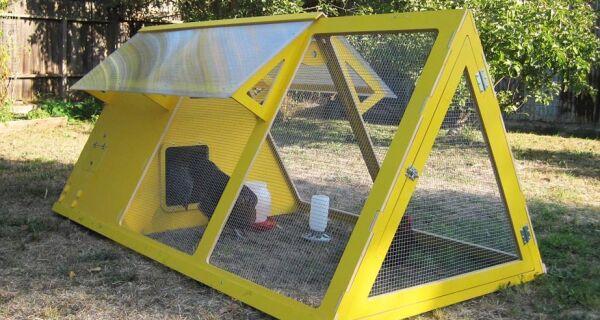 Americanos criam galinheiro decorativo para jardim