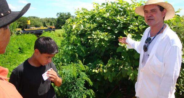 Seprotur expõe leguminosa superprotéica na Showtec 2010