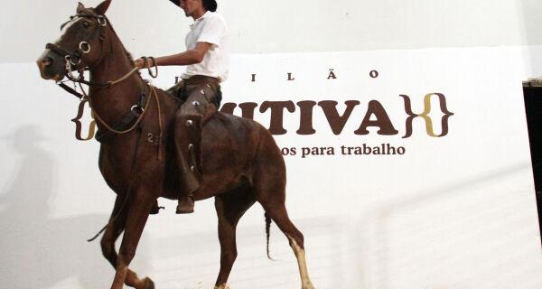 8º Leilão Comitiva reúne na Expogrande 2010 equinos e muares