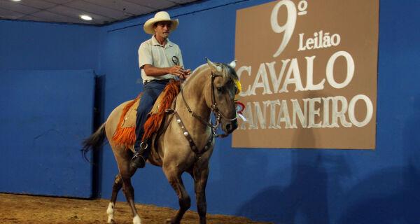 9º Leilão Cavalo Pantaneiro vende na Expogrande potro e égua por R$ 55,2 mil cada um