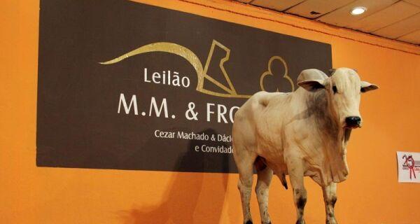 Leilão MM & Fronteira encerra Expogrande 2010 com a venda de touros nelore