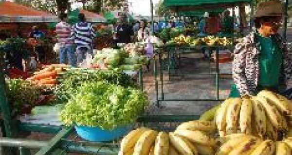 Orgânicos são vendidos no Paço Municipal