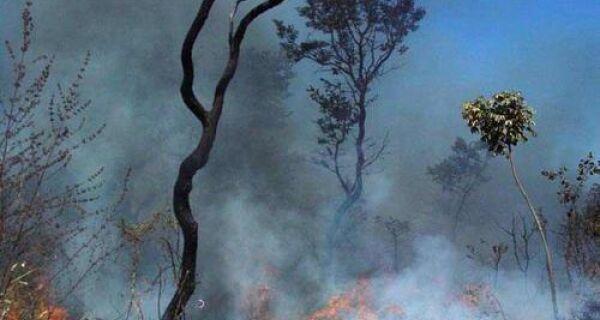 Mato Grosso é o estado com maior número de focos de incêndio em agosto