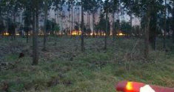 Lavouras na fronteira são prejudicadas por incêndios