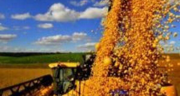 MS bate novo recorde na safra de grãos