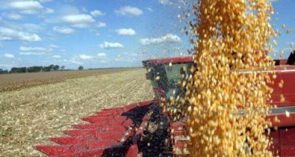 Aumento de consumo desafia agricultura orgânica brasileira