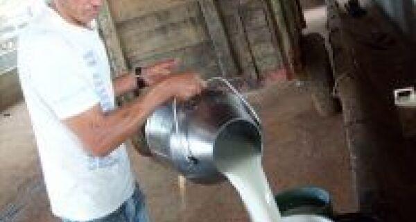 Programa do governo fortalece pecuária leiteira no Estado