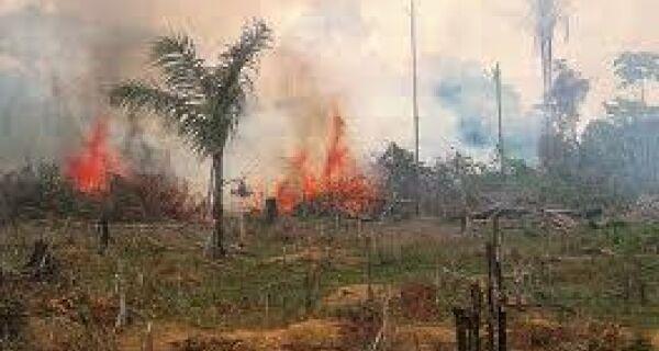 Fazendeiro é multado em R$ 2 milhões por incêndio