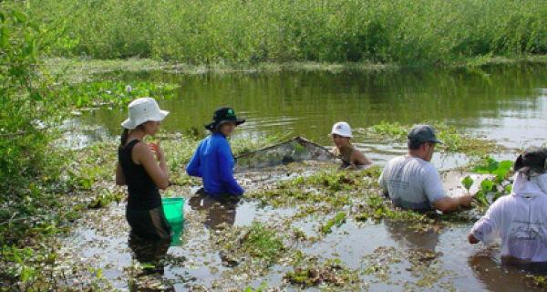 Pantanal terá índice de sustentabilidade