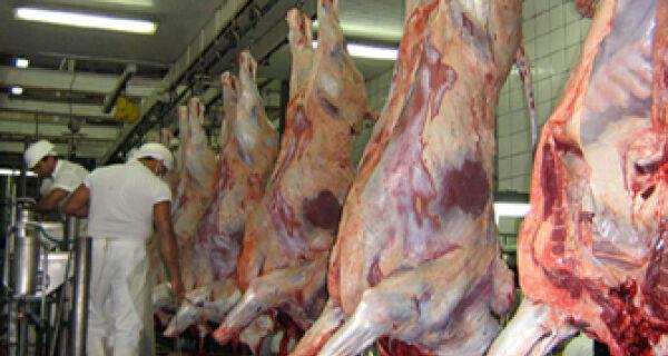 Arroba do boi atinge alta em outubro, chegando a R$ 108
