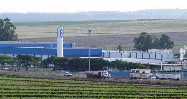 Bertin é obrigado a suspender 50% dos abates em Naviraí