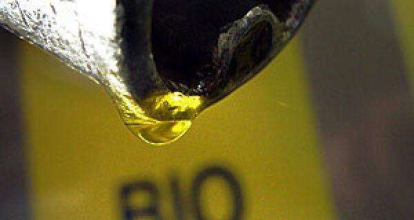 Rio Brilhante inaugura usina de biodiesel de R$ 111 milhões