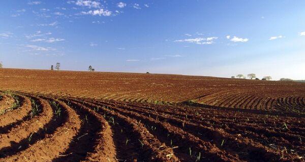 Valorização da soja faz preço da terra subir