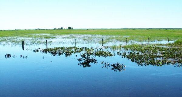 Governo oficializa estado de emergência no Pantanal