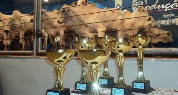 Abertura de Leilões rankeados contou com premiação e homenagem