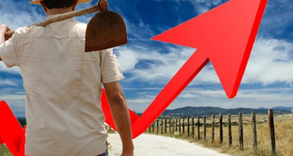População rural cresceu nas regiões Norte e Centro-Oeste