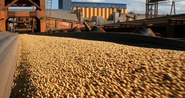 Importações de soja da China podem aumentar 16% em maio