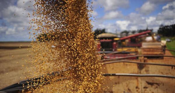 Otimismo na agricultura deve continuar nos próximos cinco anos