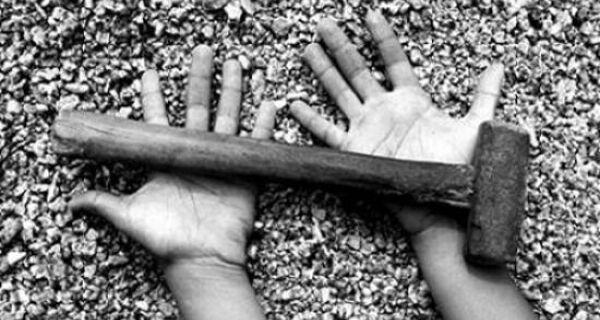 Agricultura concentra 59% do trabalho infantil de risco