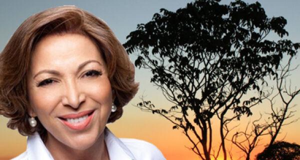 Ideli Salvatti diz que Código Florestal deve ser prioridade da Casa