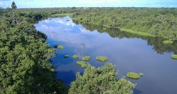 Áreas de conservação podem gerar bilhões para o Brasil