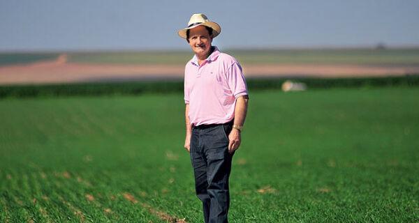 Cerrado brasileiro produz trigo melhor que o da Argentina