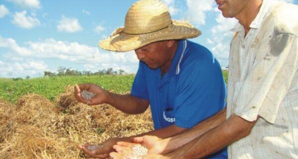 CNA defende novo modelo de política agrícola para garantir renda ao produtor rural