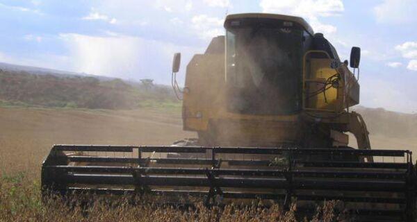 Produção de grãos chega a 162 milhões de toneladas, segundo Conab