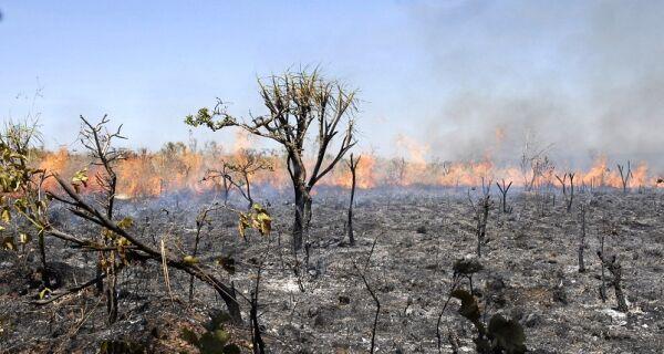 Queimadas atingem o Centro-Oeste, que entra em mais uma temporada de seca