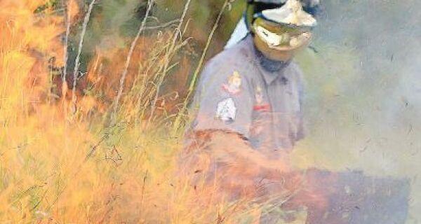 Estado já contabilizou 279 focos de queimada