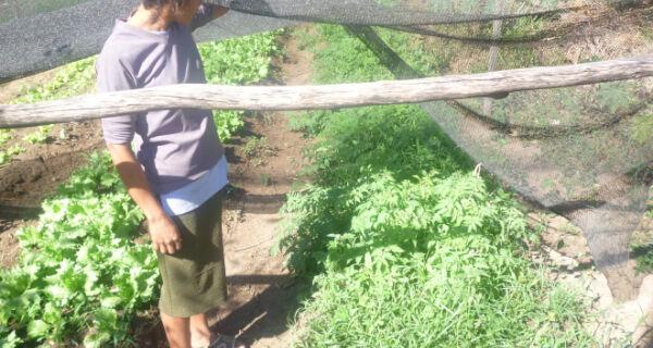 Agricultora relata que a população três-lagoense prefere comprar os produtos direto da roça