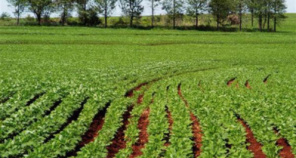 Financiamento do agronegócio avança 14,7%