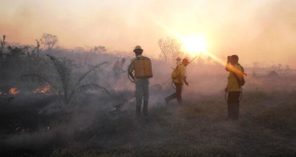Região do Pantanal concentra maior número de focos de incêndio em MS