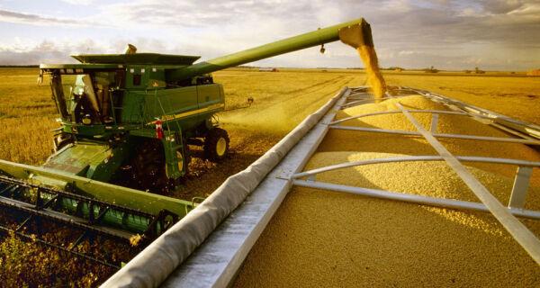Faturamento bruto das 20 principais lavouras do Brasil supera R$ 200 bilhões