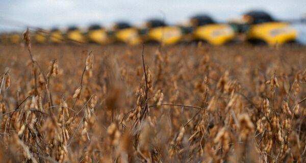 Valor Bruto da Produção deve crescer quase 11% em 2011 no Brasil
