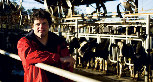 """Aumento da demanda provoca uma """"Revolução no leite"""""""