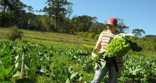 MS: 180 milhões para o Plano Safra da Agricultura Familiar no estado
