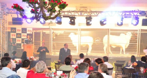 Leilão de luxo leva vacas para espaço de gala das noivas de Campo Grande