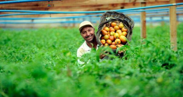Trabalhador rural poderá ter direito a aposentadoria maior do que o salário mínimo