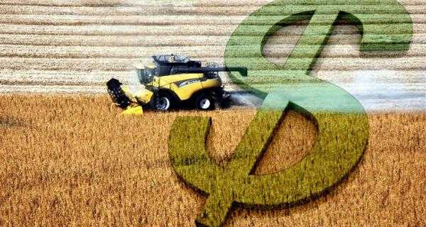 Imposto de Renda: produtor rural precisa ficar atento à declaração